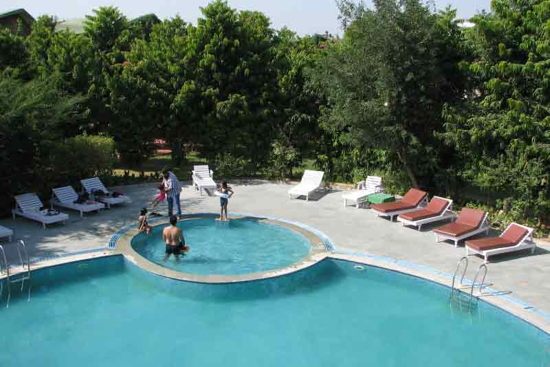 Forest Resort swimming pool